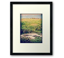 Lurking Lumps ( Hippos Under Water ) Framed Print