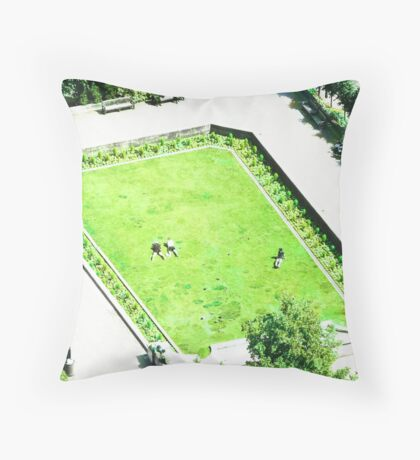 Hoping to go brown  Throw Pillow