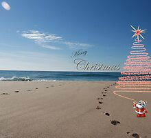 Merry Chistmas Aussie style by ©Josephine Caruana