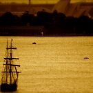 Tall Ship On Sydney Harbour by Malcolm Clark
