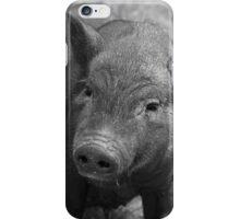 Pigg iPhone Case/Skin