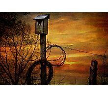 Blue Bird House and Barbed Wire Photographic Print