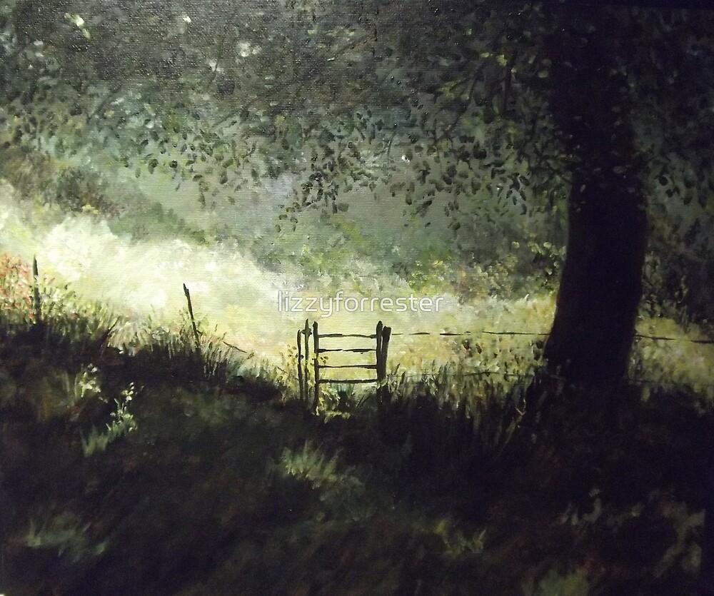 Shady Meadow by lizzyforrester