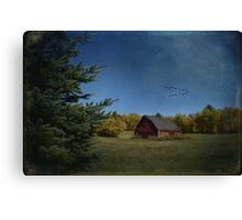 a brush with fall Canvas Print