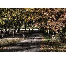 Stylized park Photographic Print