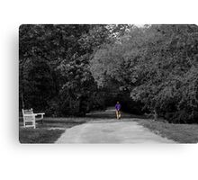 Lonely walk Canvas Print