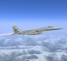 General Dynamics F-16c by Walter Colvin