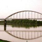Des Arc, Arkansas USA by WildestArt