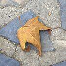 Leaf by inglesina