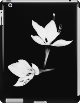 White|Black [Print and iPhone / iPad / iPod Case] by Damienne Bingham