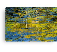 Of Shadows and Reflections Canvas Print