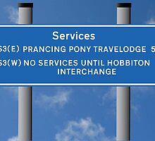 Prancing Pony Travelodge by Vince Fitter