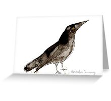 Birds in INK ~ Australian Currawong Greeting Card