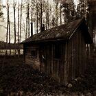 A Small Sauna by SunDwn