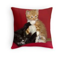 Naughty Kittens! Throw Pillow