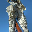 Bow pole of a sailing ship by Peter Wiggerman