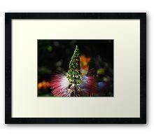 Weeds - Hierbajo Framed Print