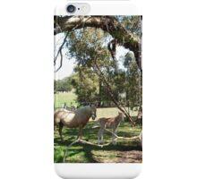 Australiana Foal iPhone Case/Skin
