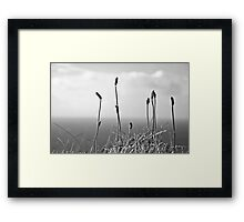 Ireland in Mono: Higher Than The Heavens Above Framed Print