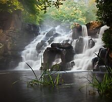 Virginia Water Cascades by Steve  Liptrot