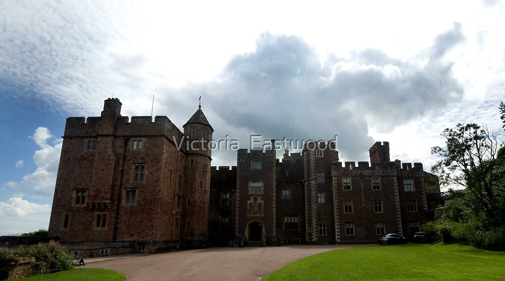 Dunster Castle by Victoria  Eastwood