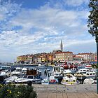 Rovinj Croatia by lynn carter