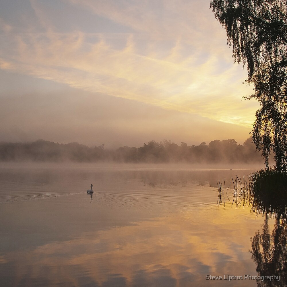 Virginia Water Lake by Steve  Liptrot