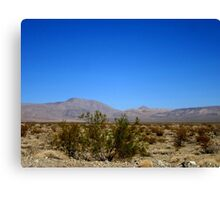 Desert Blues Canvas Print