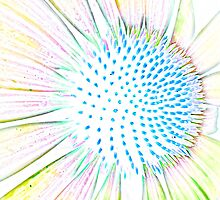 Cosmic Comet Flower by Michael Taggart