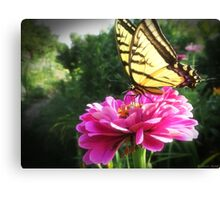 Flower and Butterfly Canvas Print