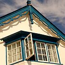 Budleigh Window by Mike  Waldron