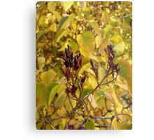 Fall Lilacs Metal Print