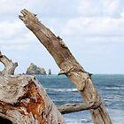 Rialto Beach Sea Stacks by Linda Dilbeck