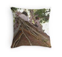 "Syzygium hemilampra ""Strangler Fig"" Throw Pillow"