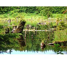 Temple Lake Photographic Print