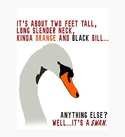 Hot Fuzz Swan Quote Photographic Print