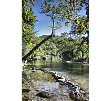 Blue Spring at Hammond Camp Photographic Print
