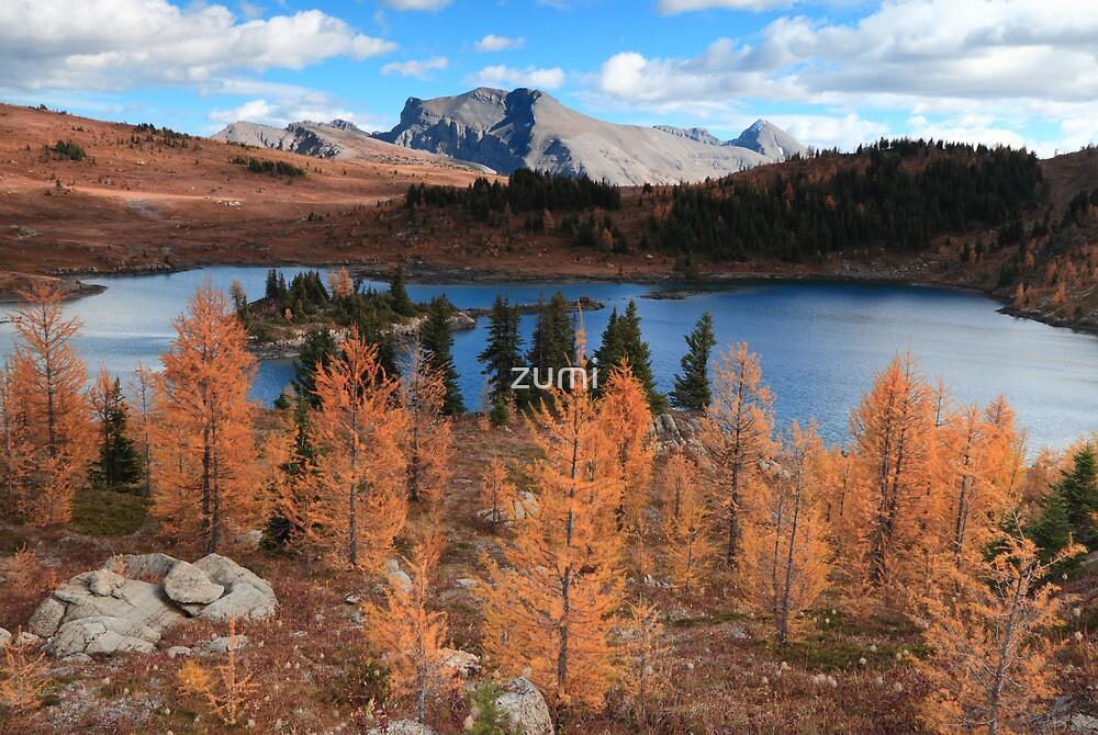 Autumn in high altitude III by zumi