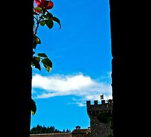 A Different View Castello di Amorosa by HanieBCreations