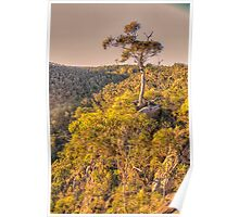Morning Light - Bungonia National Park, Bungonia NSW Australia - The HDR Experience Poster