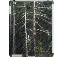 20.11.2015: Pine Trees and Blizzard iPad Case/Skin