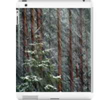20.11.2015: Blizzard in the Forest iPad Case/Skin