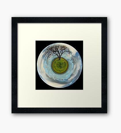 One tree planet Framed Print