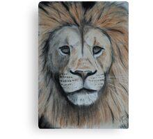 Tinted charcoal lion portrait Canvas Print
