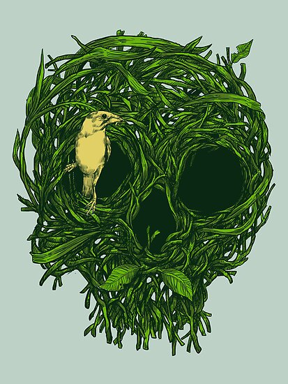Skull Nest by carbine