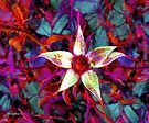 Captive Star by RC deWinter