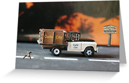 Their timely arrival and location will definitely bode well for the cat. by Susan Littlefield