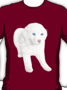 Ƹ̴Ӂ̴Ʒ SWEET DOG TEE SHIRT Ƹ̴Ӂ̴Ʒ T-Shirt