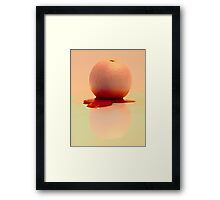 Drained of colour reflection Framed Print