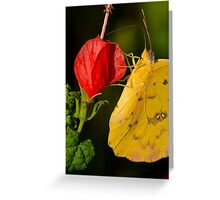 Up and Over and into the Heart Greeting Card
